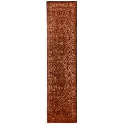 Silk Road Rust Area Rug Rug Size: Runner 26 x 10
