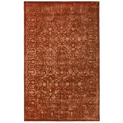 Silk Road Rust Area Rug Rug Size: Rectangle 76 x 96