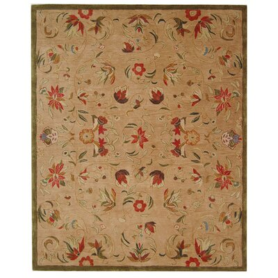 Anatolia Beige/Green Area Rug Rug Size: Rectangle 96 x 136