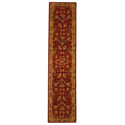 Anatolia Burgundy/Gold Area Rug Rug Size: Runner 23 x 14