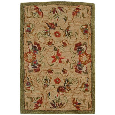 Anatolia Beige/Green Area Rug Rug Size: Rectangle 5 x 8