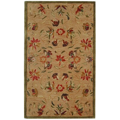 Anatolia Beige/Green Area Rug Rug Size: Rectangle 3 x 5