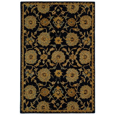 Anatolia Hand-Woven Wool Navy/Gold Area Rug Rug Size: Rectangle 4 x 6