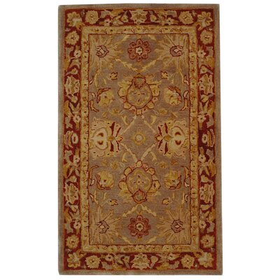 Anatolia Grey/Red Area Rug Rug Size: 2 x 3