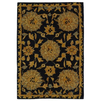 Anatolia Hand-Woven Wool Navy/Gold Area Rug Rug Size: Rectangle 2 x 3