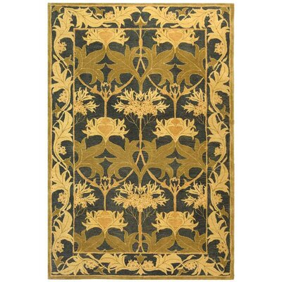 Anatolia Navy/Sage Area Rug Rug Size: Rectangle 5 x 8