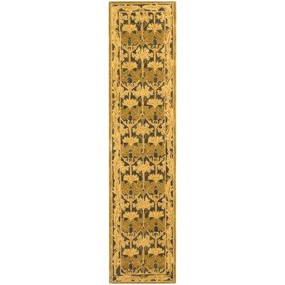 Anatolia Navy/Sage Area Rug Rug Size: Runner 23 x 10