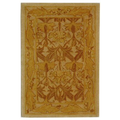 Anatolia Ivory/Gold Area Rug Rug Size: Rectangle 2 x 3