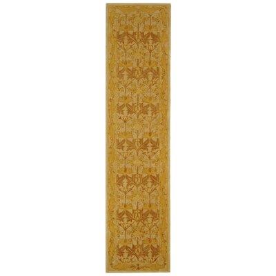 Anatolia Ivory/Gold Area Rug Rug Size: Runner 23 x 10