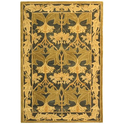 Anatolia Navy/Sage Area Rug Rug Size: Rectangle 4 x 6