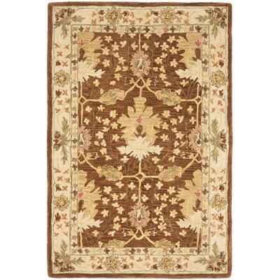Anatolia Brown/Cream Area Rug Rug Size: 4' x 6'