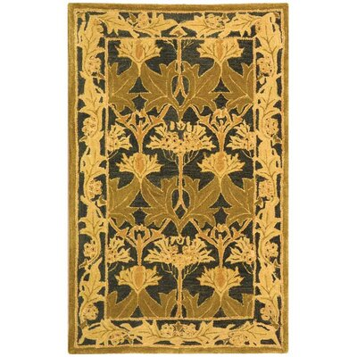 Anatolia Navy/Sage Area Rug Rug Size: Rectangle 3 x 5