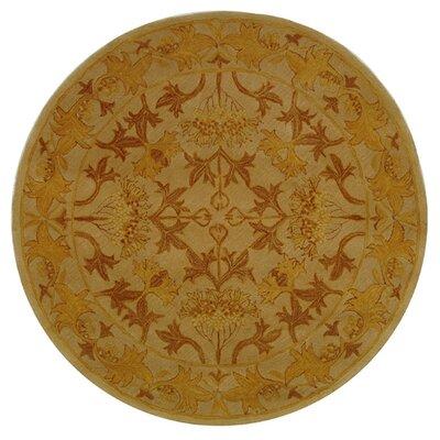 Anatolia Ivory/Gold Area Rug Rug Size: Round 8