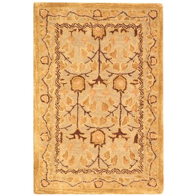 Anatolia Ivory/Gold Area Rug Rug Size: Rectangle 2 x 3