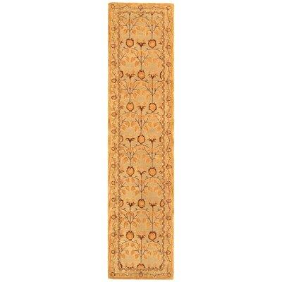 Anatolia Ivory/Gold Area Rug Rug Size: Runner 23 x 12