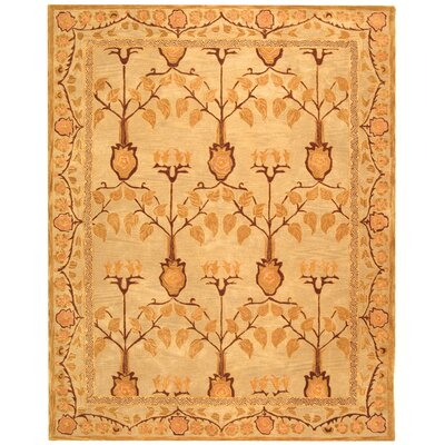 Anatolia Ivory/Gold Area Rug Rug Size: Rectangle 8 x 10