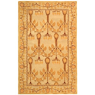 Anatolia Ivory/Gold Area Rug Rug Size: Rectangle 5 x 8