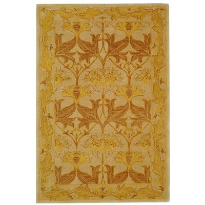 Anatolia Ivory/Gold Area Rug Rug Size: Rectangle 4 x 6