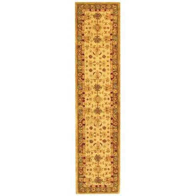 Anatolia Cream/Dark Sage Area Rug Rug Size: Runner 23 x 10