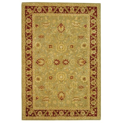 Anatolia Light Green/Red Area Rug Rug Size: 5 x 8