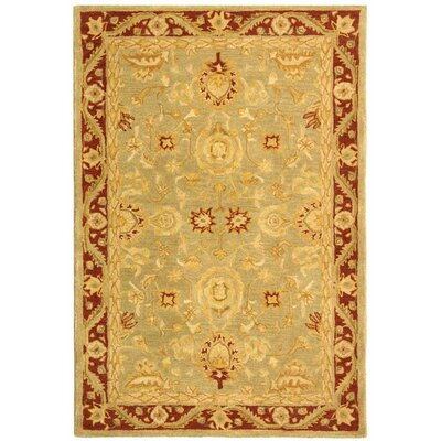 Anatolia Light Green/Red Area Rug Rug Size: 6' x 9'