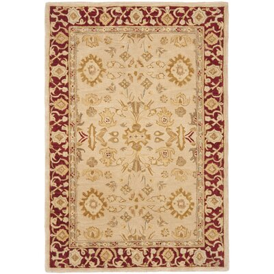 Anatolia Ivory & Red Area Rug Rug Size: Rectangle 4 x 6