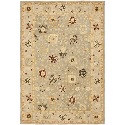 Anatolia Grey Blue/Mint Outdoor Area Rug Rug Size: Rectangle 4 x 6