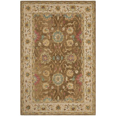 Anatolia Brown/Ivory Area Rug Rug Size: Rectangle 4 x 6