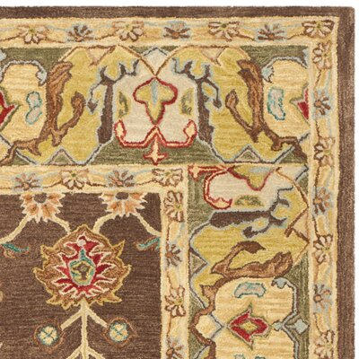 Anatolia Brown/Gold Area Rug Rug Size: Runner 23 x 14