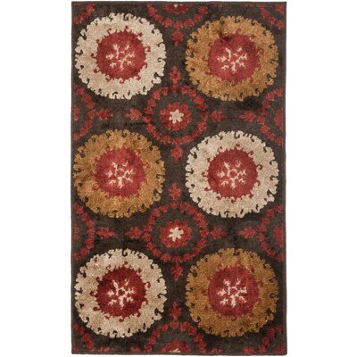 Kashmir Brown / Red Rug Rug Size: Rectangle 4 x 6