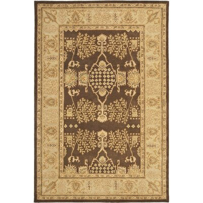 Bergama Brown/Green Area Rug Rug Size: Rectangle 5 x 8