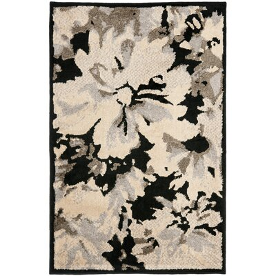 Kashmir Black / Ivory Rug Rug Size: Rectangle 5 x 8