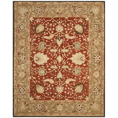 Anatolia Rust/Green Area Rug Rug Size: Rectangle 9 x 12