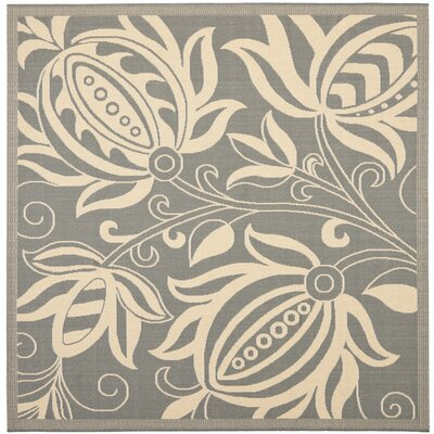 Courtyard Grey / Natural Indoor/Outdoor Rug Rug Size: Square 6'7