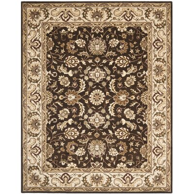Royalty Chocolate/Beige Rug Rug Size: 8 x 10