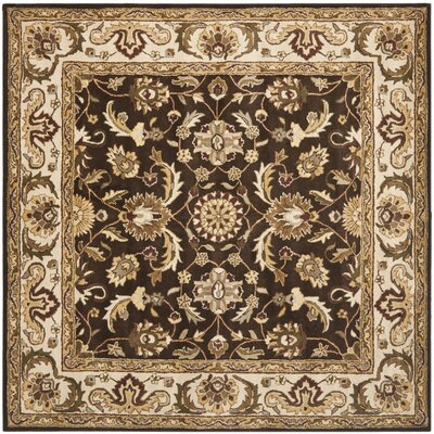 Royalty Chocolate/Beige Rug Rug Size: Square 7