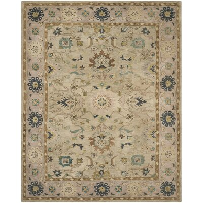 Anatolia Ivory/Beige Area Rug Rug Size: Rectangle 4 x 6