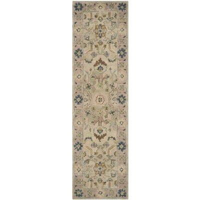 Anatolia Ivory/Beige Area Rug Rug Size: Runner 23 x 8