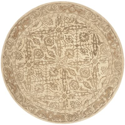 Anatolia Ivory Area Rug Rug Size: Rectangle 6 x 9