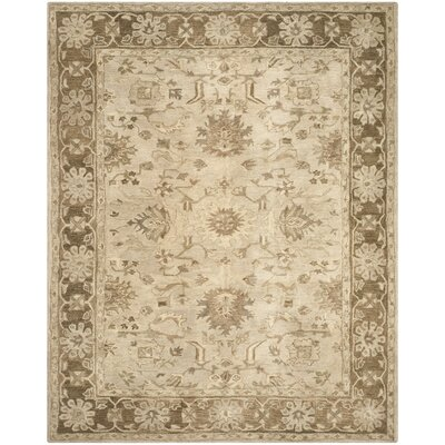 Anatolia Brown Area Rug Rug Size: 4 x 6