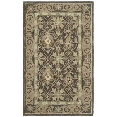 Anatolia Brown/Beige Area Rug Rug Size: Rectangle 3 x 5