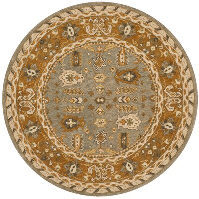 Anatolia Light Grey/Gold Area Rug Rug Size: Round 6