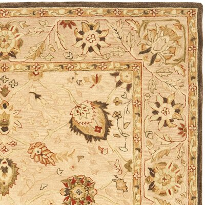 Anatolia Hand-Woven Wool Brown Area Rug Rug Size: Rectangle 8 x 10
