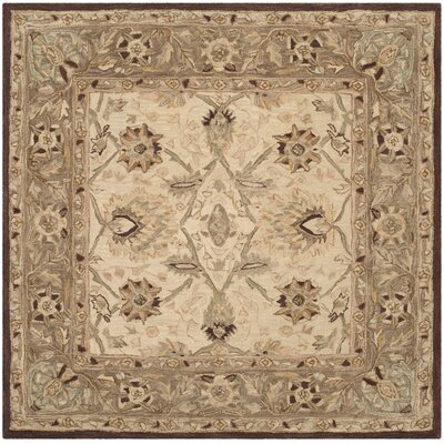 Anatolia Ivory/Brown Area Rug Rug Size: Square 8