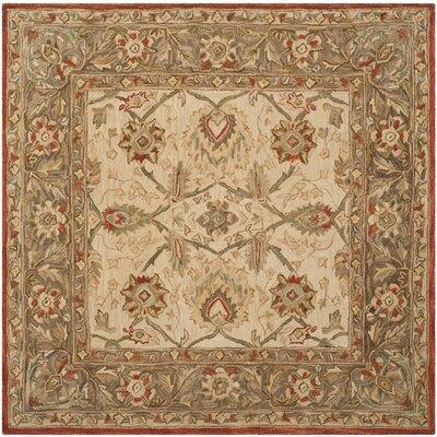 Anatolia Ivory/Rust Area Rug Rug Size: Square 6'