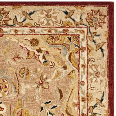 Anatolia Gold/Ivory Area Rug Rug Size: Rectangle 4 x 6