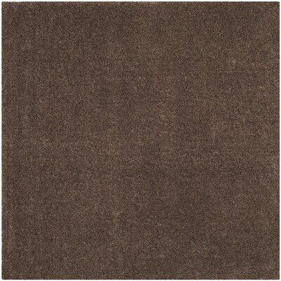 "Arizona Shag Brown Area Rug Rug Size: 5'1"" x 7'6"" ASG820L-5"
