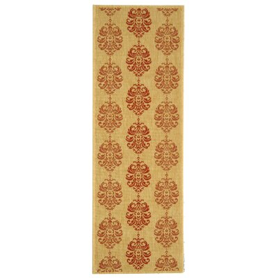 Courtyard Terracotta Area Rug Rug Size: Runner 2'4