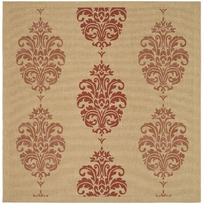 Poole Terracotta Indoor/Outdoor Area Rug Rug Size: Square 67