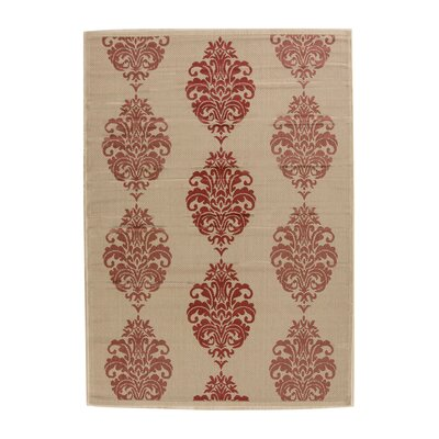 Poole Terracotta Indoor/Outdoor Area Rug Rug Size: 5'3